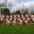Wasps FC Ladies vs. Harlequins Ladies