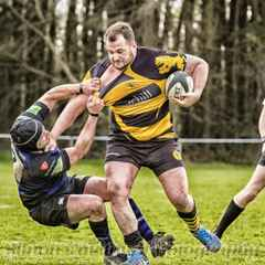 Lions 1st Fifteen v Dings Crusaders