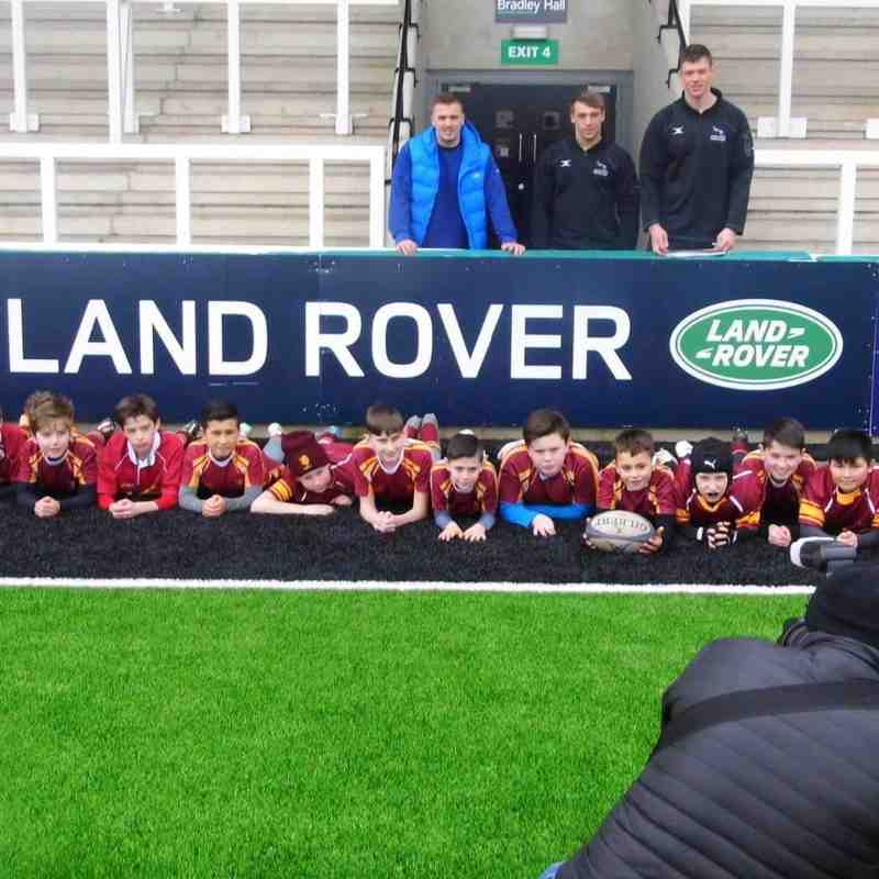 The land rover cup