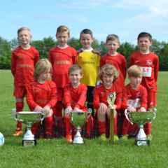 Netherton Athletic U7 2015/16