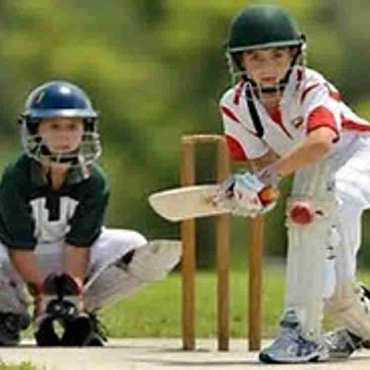 ALL STARS CRICKET for PRIMARY SCHOOL AGE CHILDREN