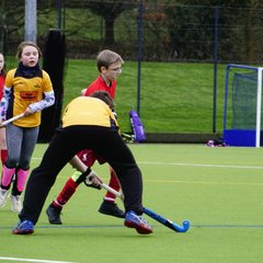 Worcestershire Tournament U12s at Droitwich Hockey Club December 16 2018