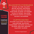 Wales vs Argentina 2nd Test