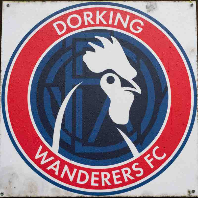 Dorking Wanderers v HARROW BOROUGH, Saturday 4th February 2018