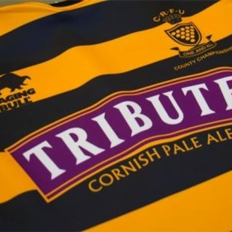 Tribute Cornwall Cup 2015/2016