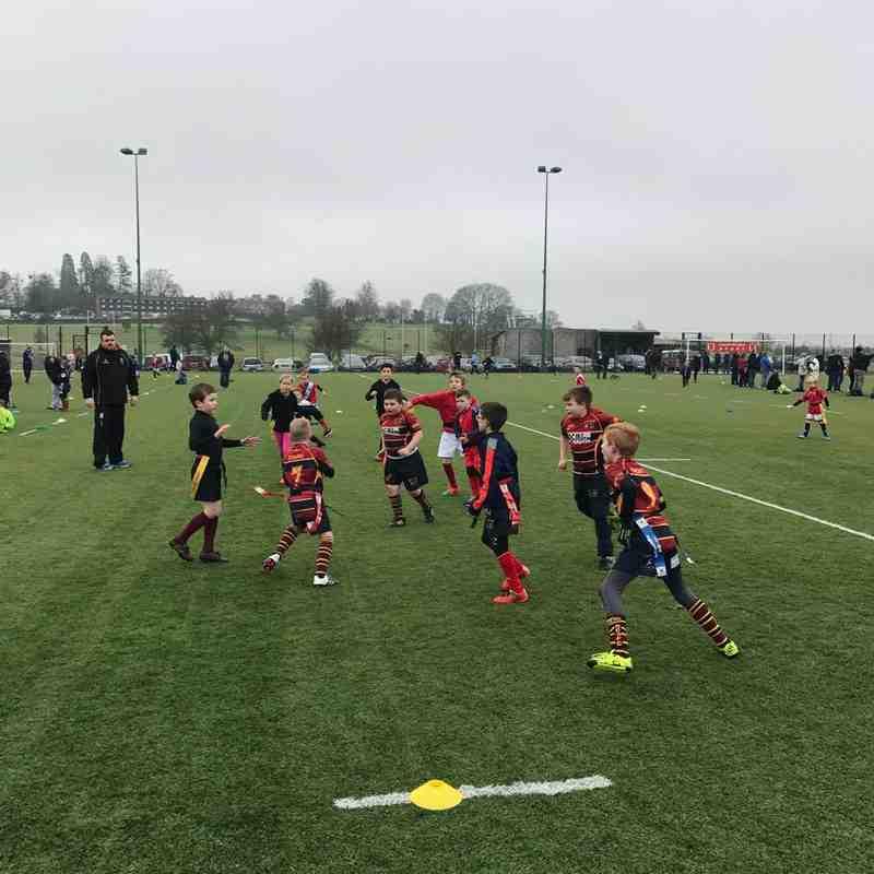 U8s v Gordon League (Hartpury) 05.02.2017