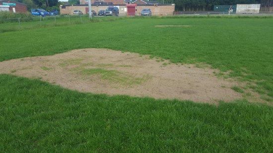 Pitch maintenance