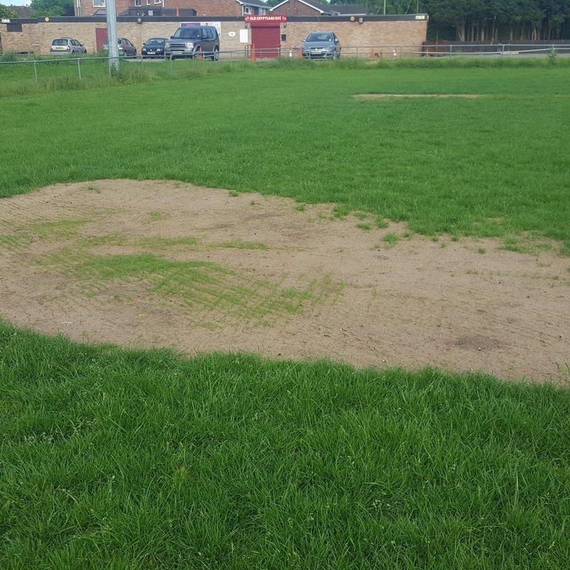 Pitch maintenance programme