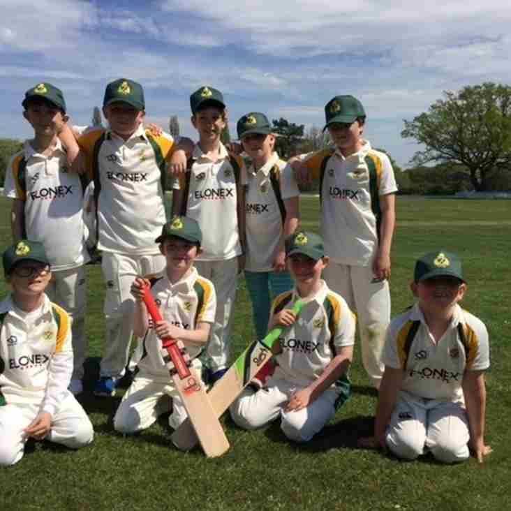 Under 9s have a great day at their first Cricket Festival