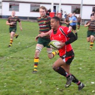 Pitt Hatrick Helps Walsall