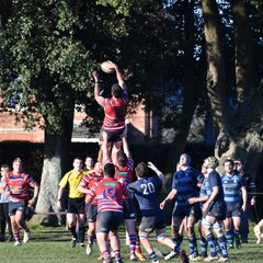 Chichester V's Tonbridge Juddian