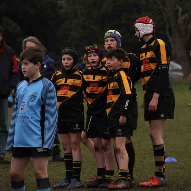 U12's v Woodbridge 19th Feb 2017