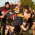 Wold Win Epic Top Of The Table  Encounter With Amazing Final Try  And End Stowmarket's Unbeaten Record
