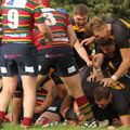 Wold Stun Norwich In Thriller  Snatching  Victory With Last Gasp Try