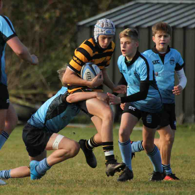 U15's Suffolk Plate v Woodbridge / Hadleigh 11.11.18