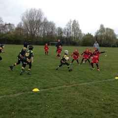 Golds Narrowly Defeat The Bears