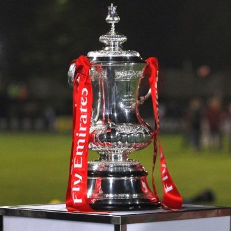 FA Cup Factfile