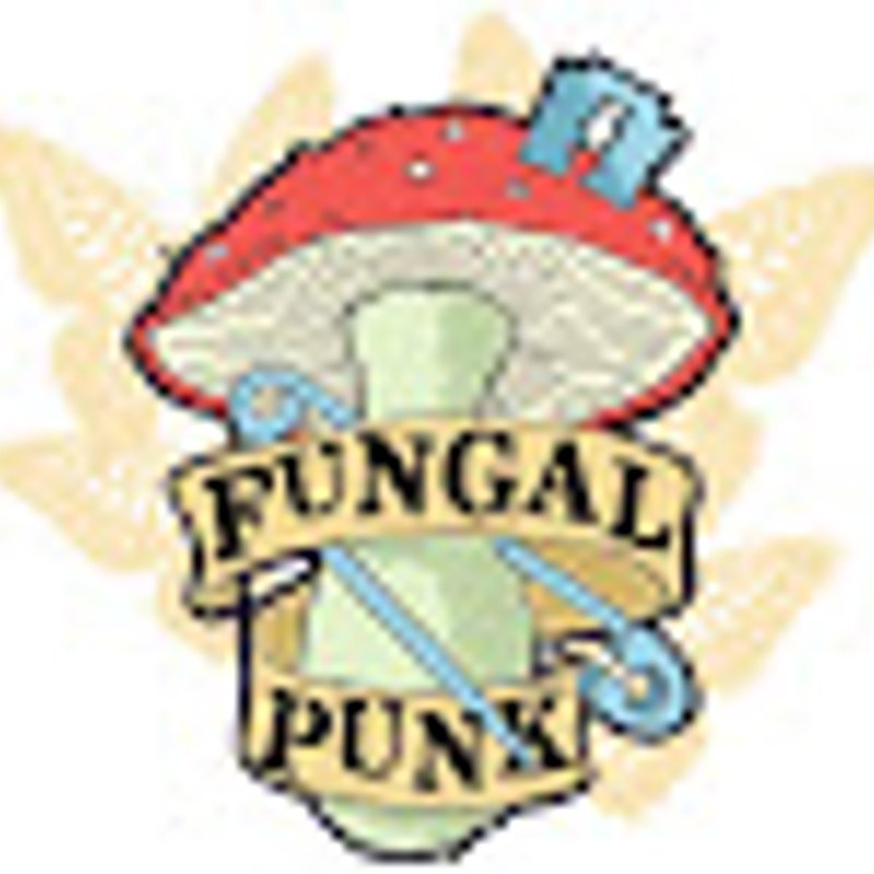 Burscough Vs Runcorn Linnets report by Fungal Punk