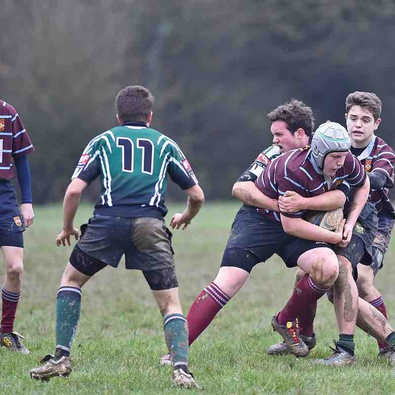 Crawley RFC U16 XV v  Heathfield & Waldron RFC U16 XV - 24 Jan 16
