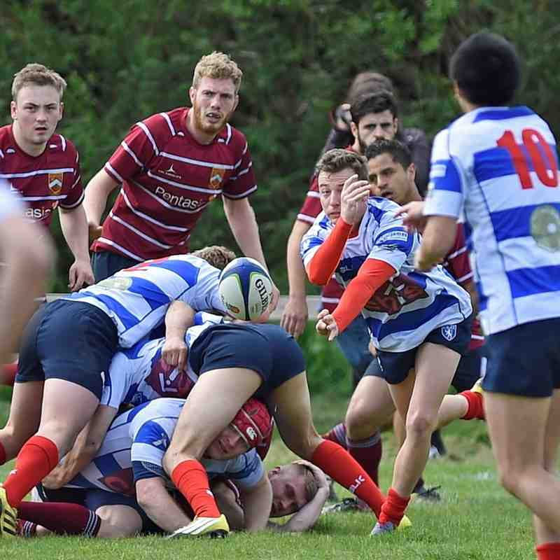 Crawley 1st XV v Lewes 1st XV - Sussex Shield Semi-final -14 May 16