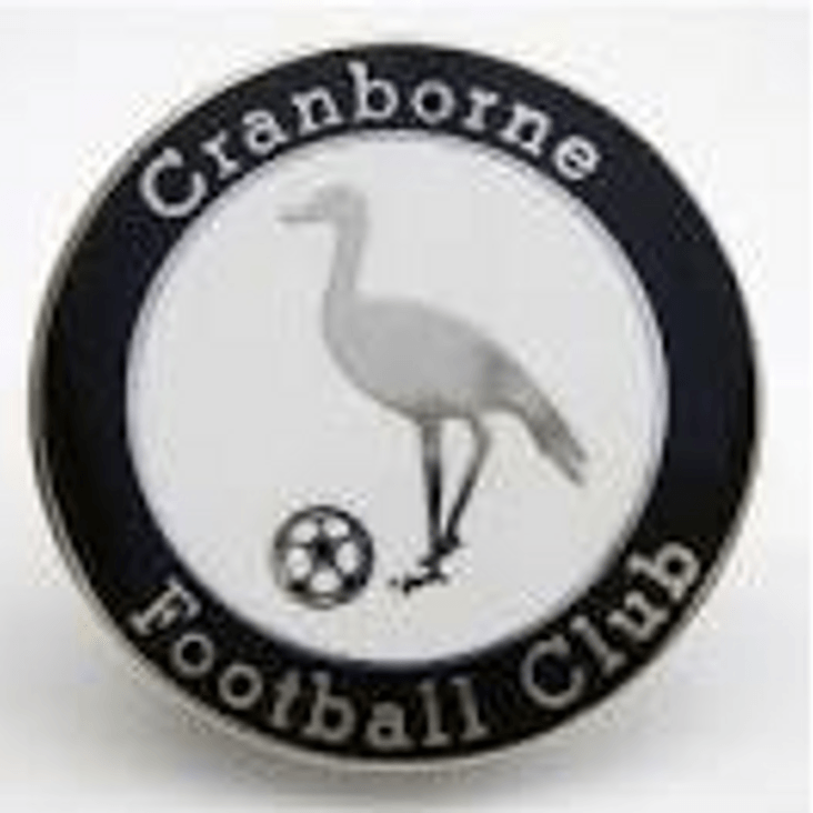 Swans v Cranborne<