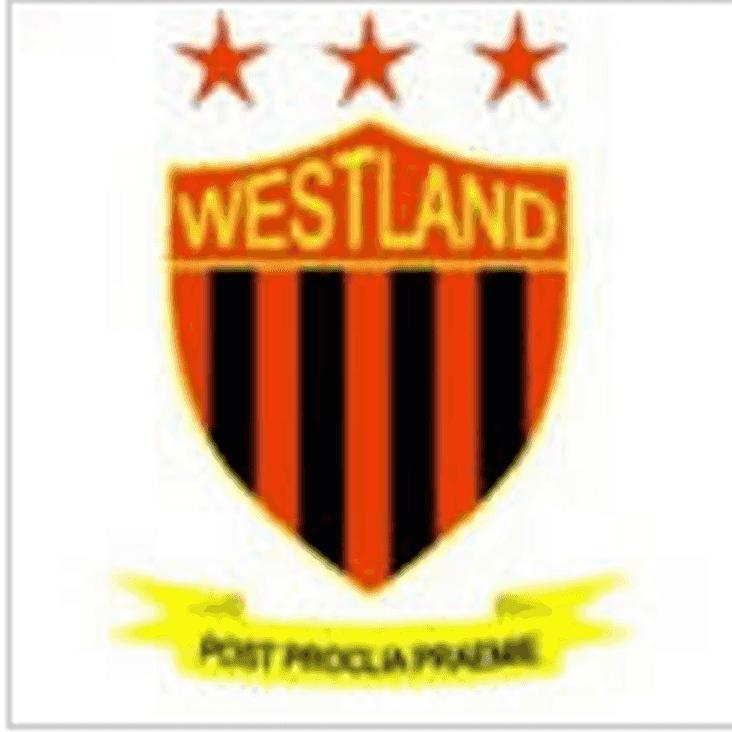 Swans v Westland Sports