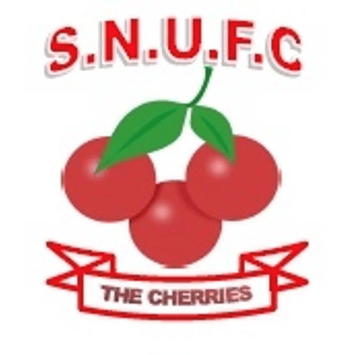 Sturminster Newton United v Swans<