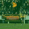 Fraser Honey named in Cornwall squad