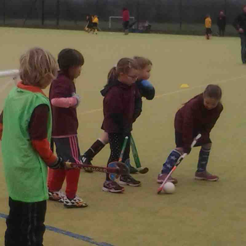 U8s Leighton Buzzard March 15th 2015 (thanks to Sue Peppiatt for some of the photos)
