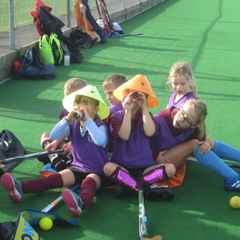 Want to get a hockey coaching qualification?