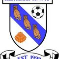 CLEETHORPES TOWN 2-2 CARLTON TOWN - MATCH REPORT