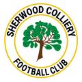 CARLTON TOWN 3-2 SHERWOOD COLLIERY - MATCH REPORT