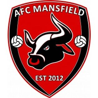CARLTON TOWN 0-2 AFC MANSFIELD - MATCH REPORT