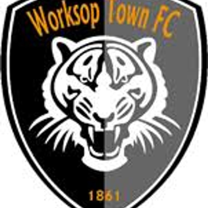 MILLERS FACE TIGERS IN THE FA CUP