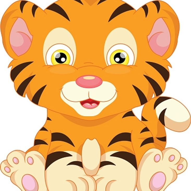 Tiggers - New Netball Session<