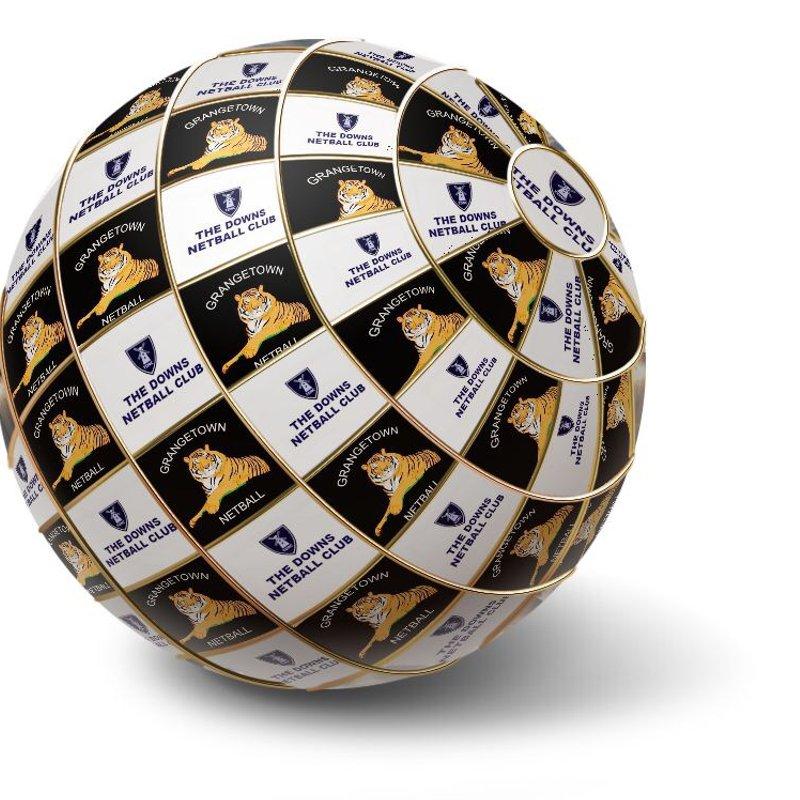 Mizuno Premier League Netball