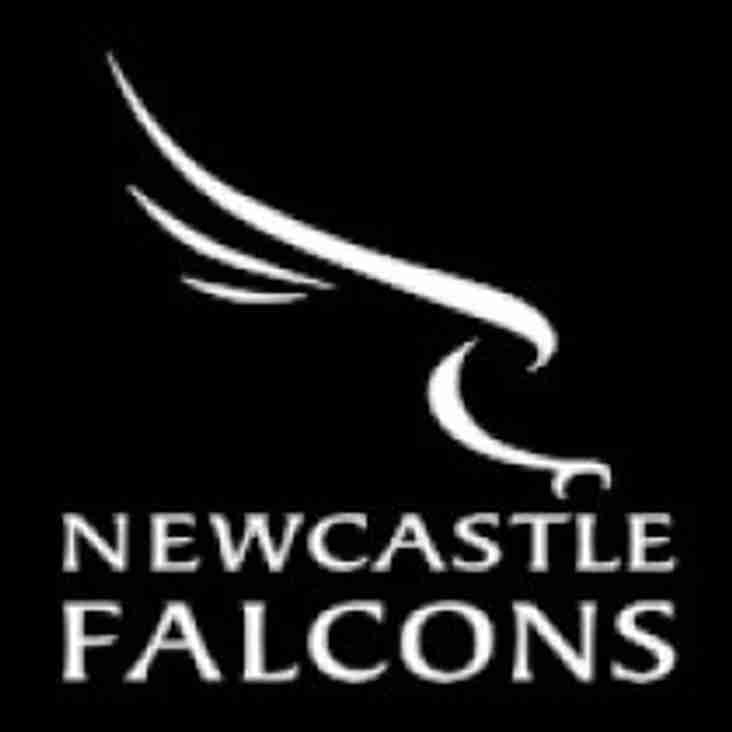 Discounted Newcastle Falcons Tickets!