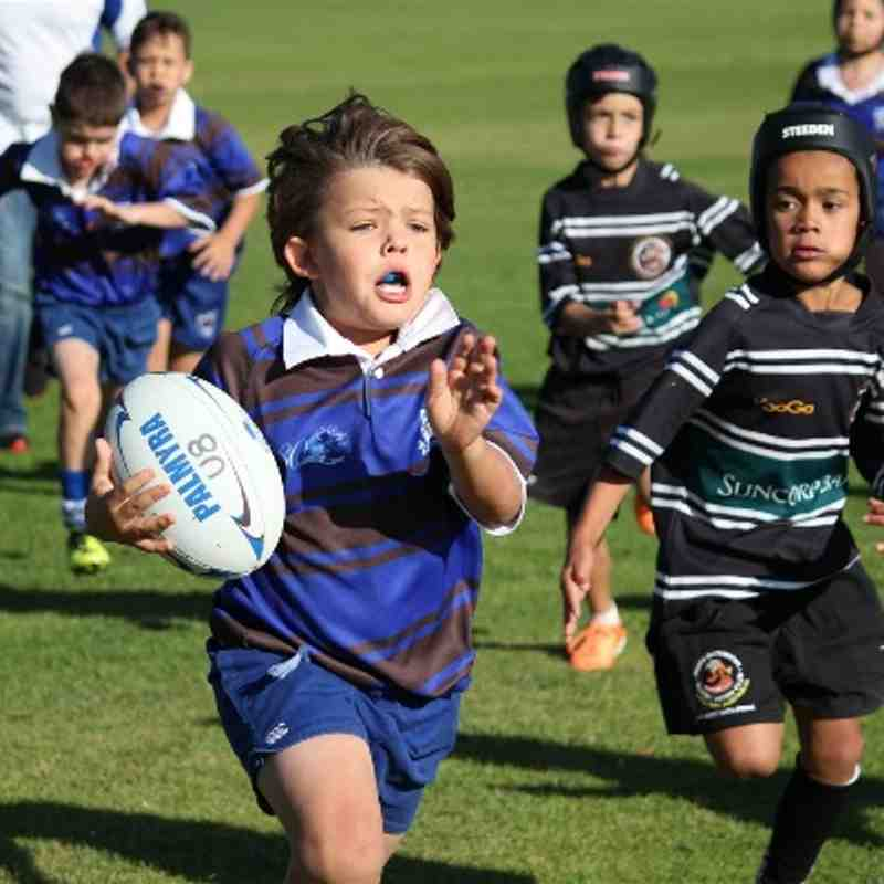 Under 8s Match Photos - Game 4