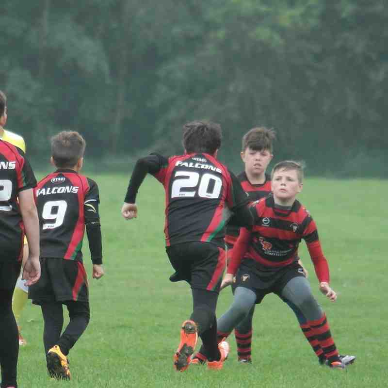 Under 11's v Farnley Falcons 11/06/16