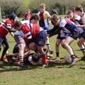 Oxford Harlequins RFC vs. Bicester
