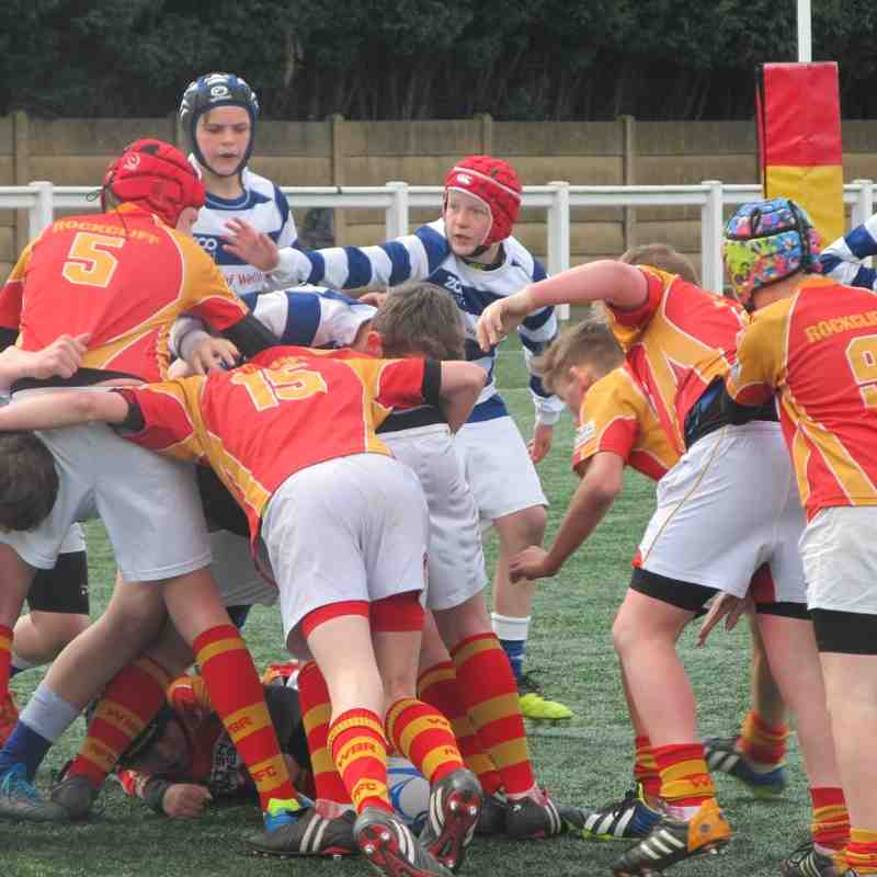 under 13s county plate final v tynedale 26 April 2015