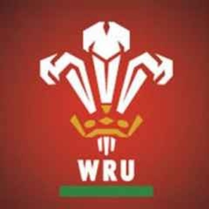 WRU National Cup / Plate / Bowl Review<
