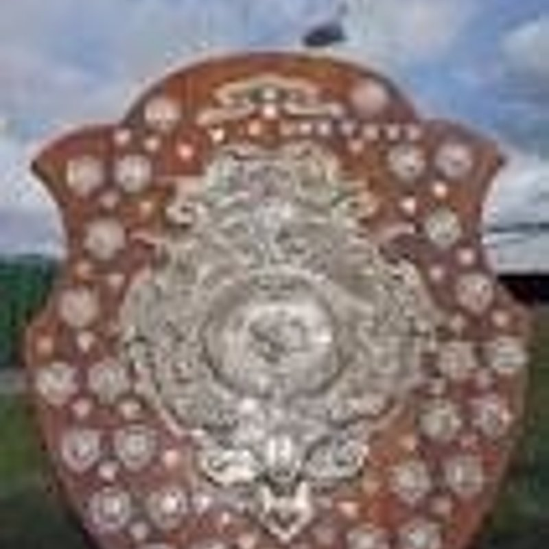 Dewar Shield / Plate/ Bowl Schools Update