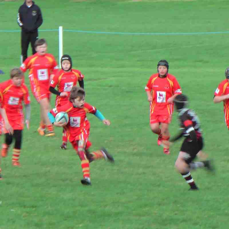 U13s v Hartlepool 9th October 2016