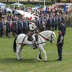 St George's Day Celebrations are a great success