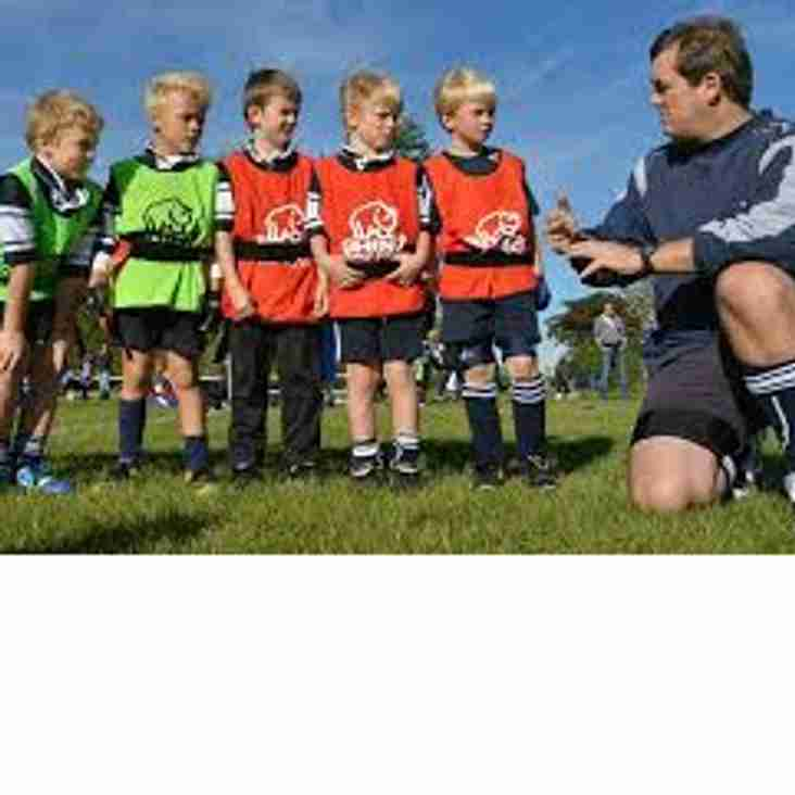 Coach for Morley RFC Under 7s wanted