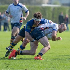 OEs 1st XV vs Old Albanians (H) 14 Apr 2017-18