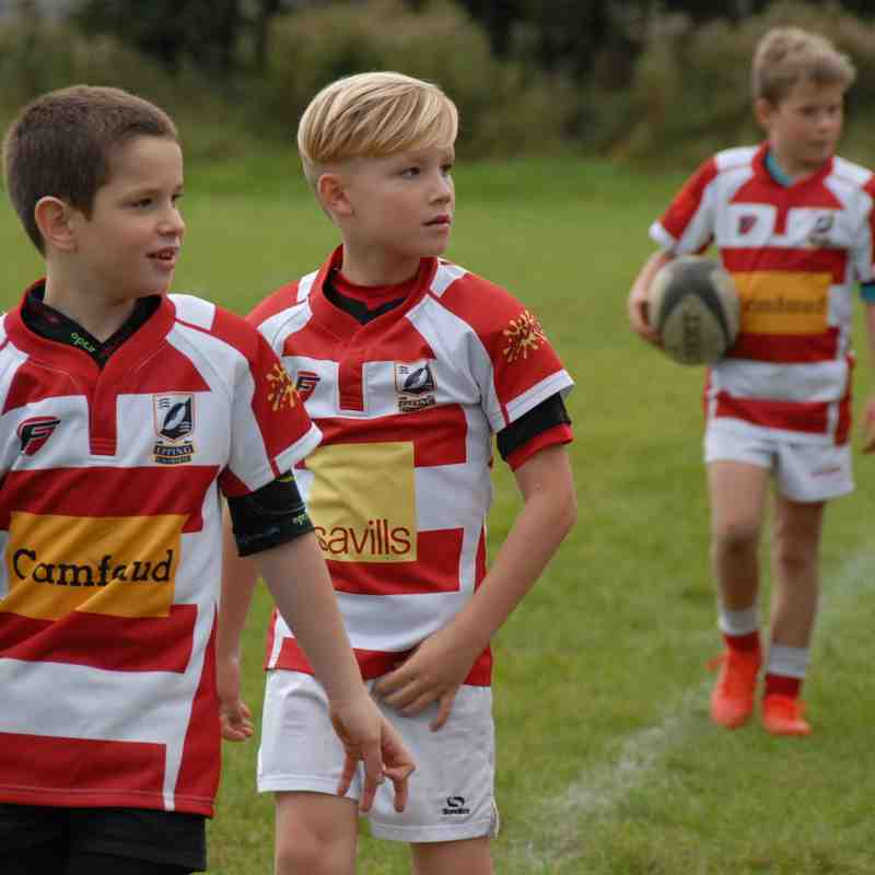 Under 9's pics from ball duty