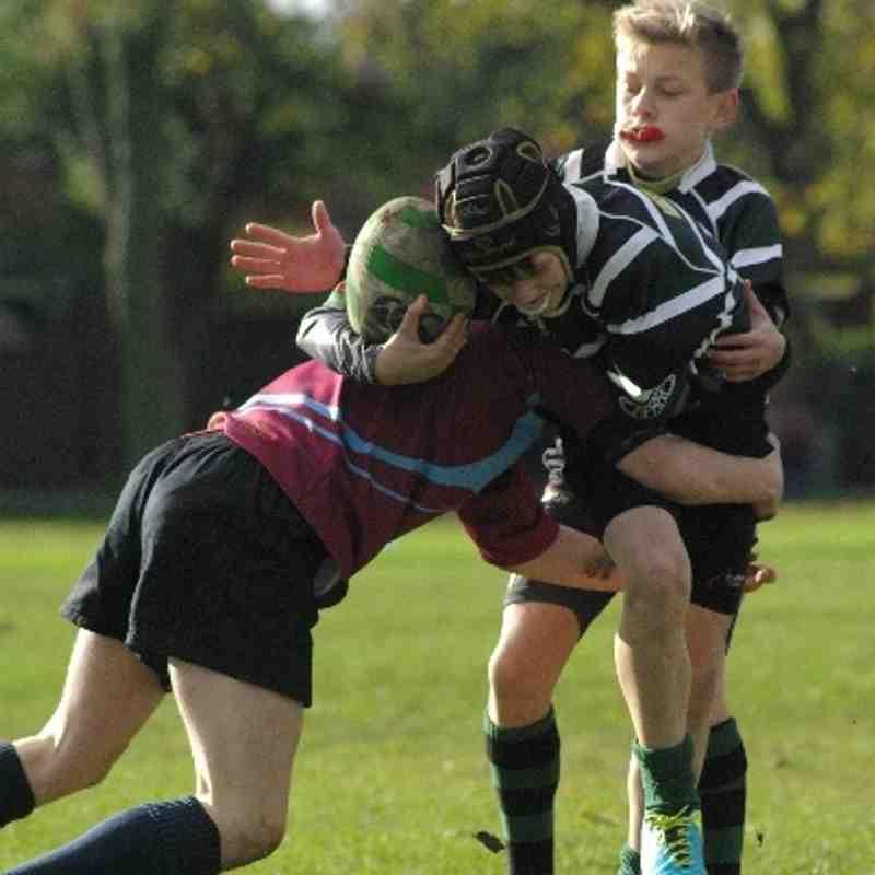 U14s v Rotherham Titans