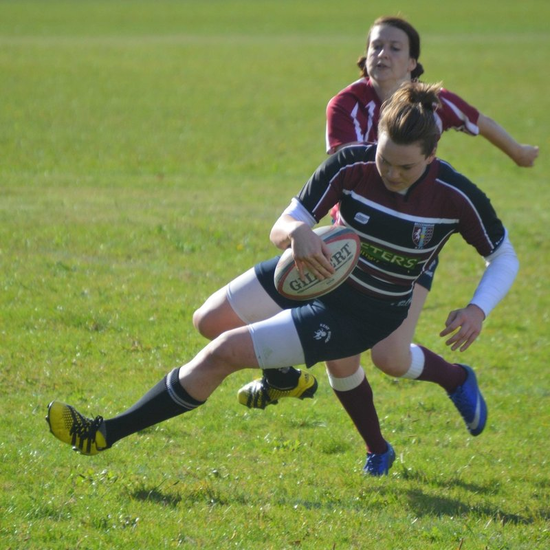 Beccs player Joins Harlequins